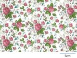 DUBARRY CHINTZ  (A4)