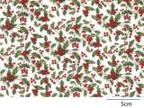 HOLLY CHINTZ  (A4)