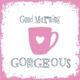 【ナプキン】 Good Morning Gorgeous