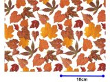 AUTUMN LEAF CHINTZ  (A4)