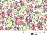 DORSET CHINTZ CLEAR  (A4)