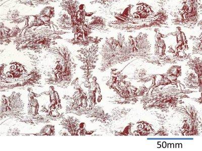 画像1: VILLAGE LIFE CHINTZ RED  (A4)