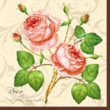 【ナプキン】 two rosa Roses of crem/rose