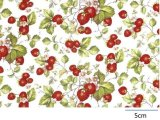 STRAWBERRY CHINTZ CLEAR  (A4)