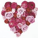 【ナプキン】 Heart of Roses