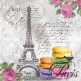 【ナプキン】 Macarons de Paris