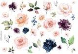Roses  Leaves