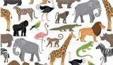 Zoo2 (A4)