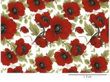 RED POPPY CHINTZ CLEAR LARGE (L)
