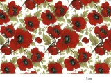 RED POPPY CHINTZ CLEAR SMALL (L)