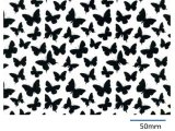 BUTTERFLIES CHINTZ BLACK  (A4)