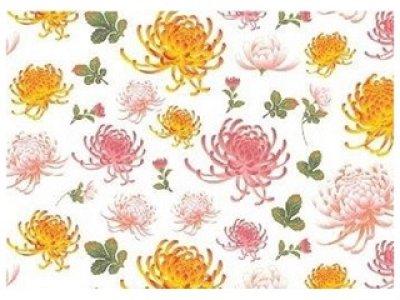 画像1: Kiku Chrysanthemum (A4)