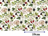 HEDGEROW CHINTZ (L)
