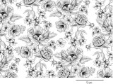 POPPY TOILE clear  (L)