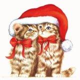 【ナプキン】 Dressed Kitten