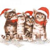 【ナプキン】 Singing Cats